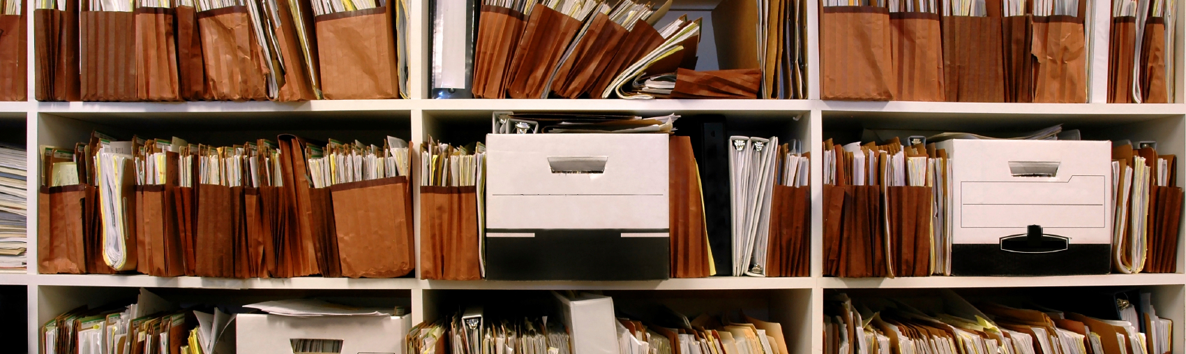 Shelves of documents